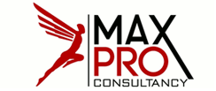 MaxPro for Consultancy LLC have more than 25 years experience with small and mid size business organization, management consultants and turn-around specialists.